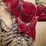 Felted Anatomy