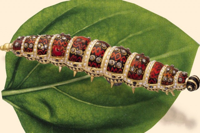 The Ethiopian Caterpillar