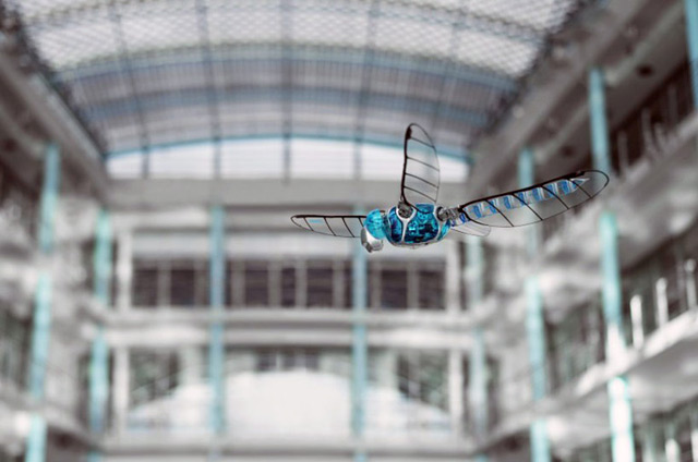 festo robotic dragonfly 1