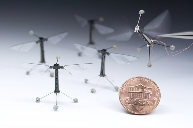 Robotic Insects
