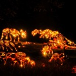 Incredible Dinosaur Pumpkins at the Great Jack O'Lantern Blaze