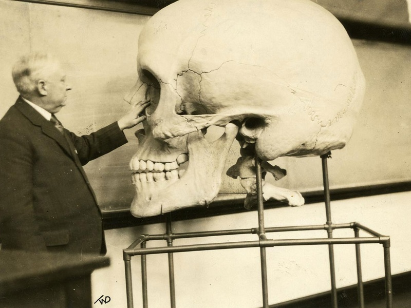 Body of Knowledge: A History of Anatomy - RobotSpaceBrain