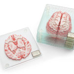 Brain Coasters by Think Geek